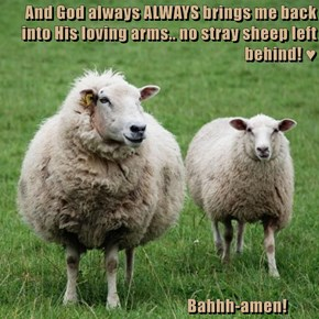 And God always ALWAYS brings me back into His loving arms.. no stray sheep left behind! ♥                                                    Bahhh-amen!