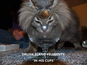 "DRUNK SLANG #ELEBENTY:                                                                  ""IN HIS CUPS"""