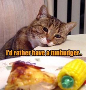Kittie malaise..