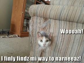 Woooah! I finly findz mi way to narneeaz!