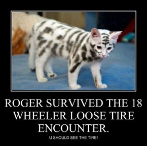 ROGER SURVIVED THE 18 WHEELER LOOSE TIRE ENCOUNTER.