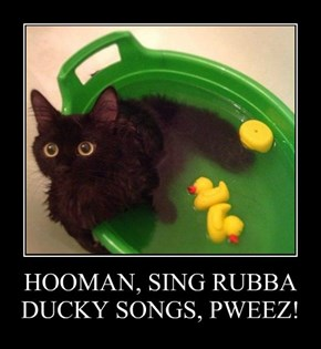 HOOMAN, SING RUBBA DUCKY SONGS, PWEEZ!