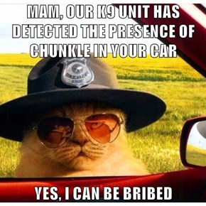 MAM, OUR K9 UNIT HAS DETECTED THE PRESENCE OF CHUNKLE IN YOUR CAR  YES, I CAN BE BRIBED
