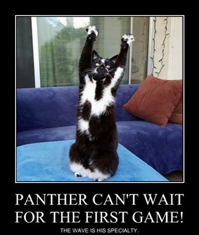 PANTHER CAN'T WAIT FOR THE FIRST GAME!