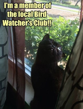 I'm a member of the local Bird Watcher's Club!!
