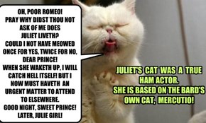 OH, POOR ROMEO! PRAY WHY DIDST THOU NOT ASK OF ME DOES JULIET LIVETH? COULD I NOT HAVE MEOWED ONCE FOR YES, TWICE FOR NO, DEAR PRINCE!  WHEN SHE WAKETH UP, I WILL CATCH HELL ITSELF! BUT I NOW MUST HAVETH  AN URGENT MATTER TO ATTEND TO ELSEWHERE. GOOD NIGH
