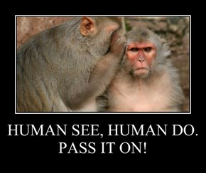 HUMAN SEE, HUMAN DO.  PASS IT ON!