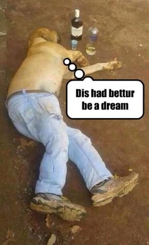 Dis had bettur be a dream