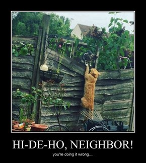 HI-DE-HO, NEIGHBOR!