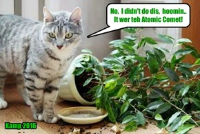 Kittie discobers dat at least teh Atomic Comet is good for somfing..