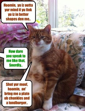 Snerdly takes no guff from hiz hoomin!