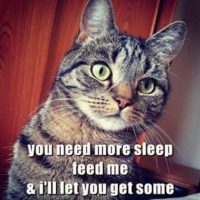 Cat Blackmail