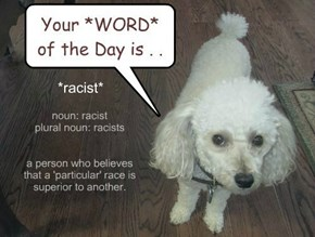 noun: racist plural noun: racists   a person who believes that a 'particular' race is superior to another.