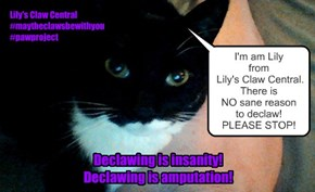declawing is insanity!