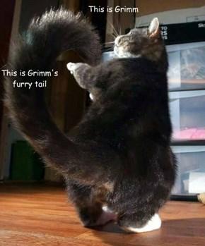 Meet Grimm