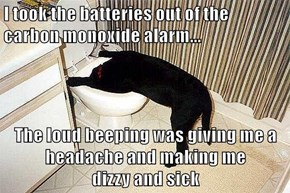 I took the batteries out of the carbon monoxide alarm...  The loud beeping was giving me a headache and making me                      dizzy and sick