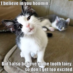 I believe in you hoomin...  But I also believe in the tooth fairy, so don't get too excited