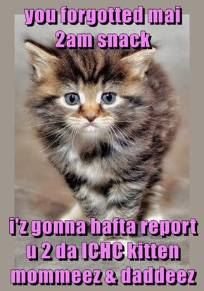 you forgotted mai 2am snack  i'z gonna hafta report u 2 da ICHC kitten mommeez & daddeez