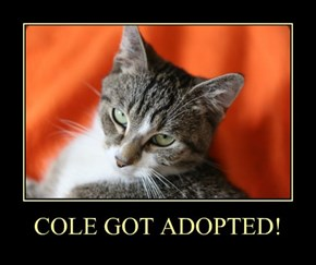 COLE GOT ADOPTED!