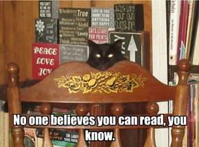 No one believes you can read, you know.