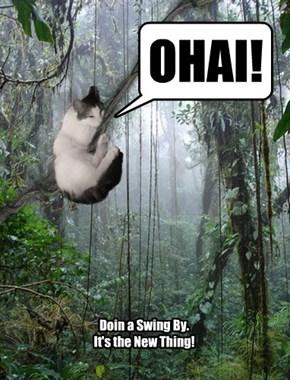 I be SWINGING!