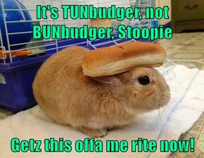 It's TUNbudger, not BUNbudger, Stoopie  Getz this offa me rite now!