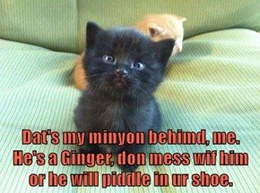 Dat's my minyon behimd, me.  He's a Ginger, don mess wif him or he will piddle in ur shoe.