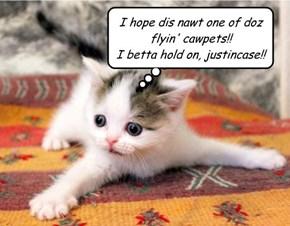 I hope dis nawt one of doz  flyin' cawpets!! I betta hold on, justincase!!