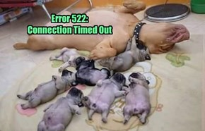 Error 522:  Connection Timed Out