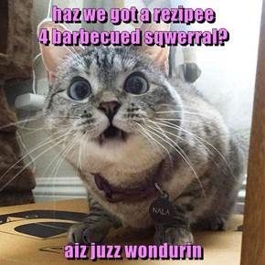 haz we got a rezipee                                       4 barbecued sqwerral?   aiz juzz wondurin