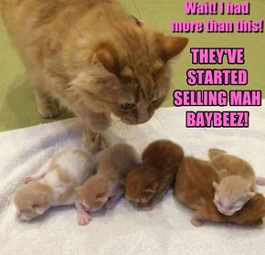 THEY'VE STARTED SELLING MAH BAYBEEZ!