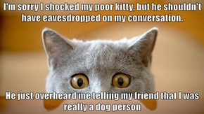 I'm sorry I shocked my poor kitty, but he shouldn't have eavesdropped on my conversation.  He just overheard me telling my friend that I was really a dog person