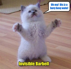 Invisible Barbell
