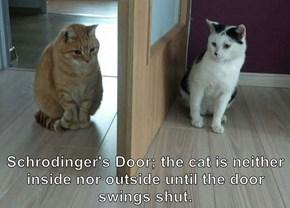 Schrodinger's Door