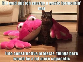 If u wud put teh energy u waste tormentin' mei  into constructive projects, things here would be a lot more copacetic