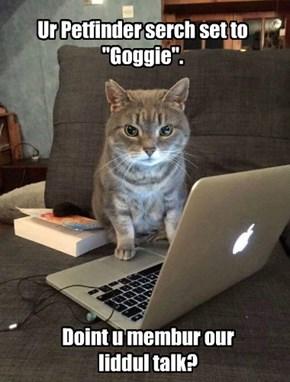 """Ur Petfinder serch set to """"Goggie""""."""