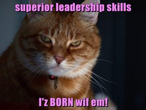 superior leadership skills  I'z BORN wif em!