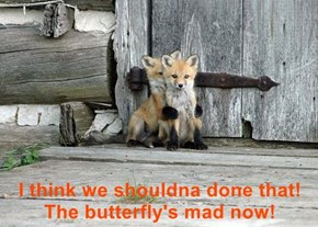 I think we shouldna done that! The butterfly's mad now!
