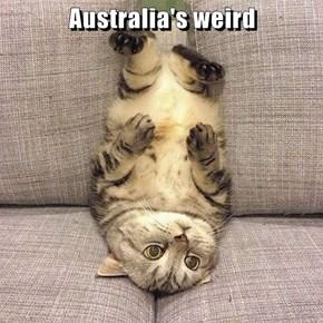 Australia's weird