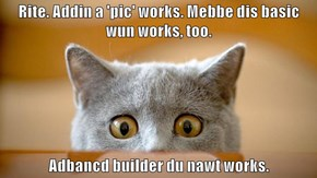 Rite. Addin a 'pic' works. Mebbe dis basic wun works, too.  Adbancd builder du nawt works.