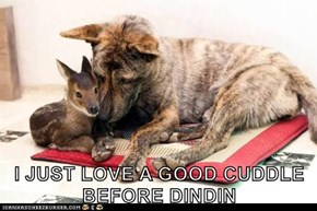 I JUST LOVE A GOOD CUDDLE BEFORE DINDIN