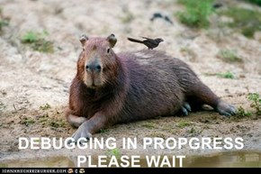 DEBUGGING IN PROPGRESS PLEASE WAIT
