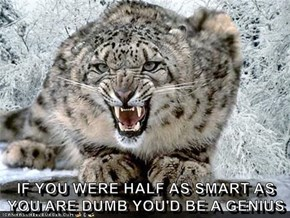 IF YOU WERE HALF AS SMART AS YOU ARE DUMB YOU'D BE A GENIUS