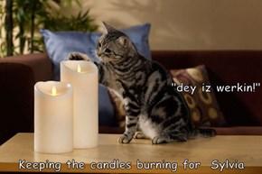 """dey iz werkin!"" Keeping the candles burning for  Sylvia"