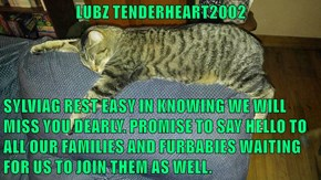 LUBZ TENDERHEART2002  SYLVIAG REST EASY IN KNOWING WE WILL MISS YOU DEARLY. PROMISE TO SAY HELLO TO ALL OUR FAMILIES AND FURBABIES WAITING FOR US TO JOIN THEM AS WELL.