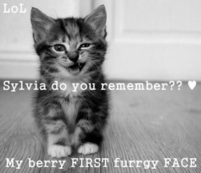 LoL Sylvia do you remember?? ♥ My berry FIRST furrgy FACE