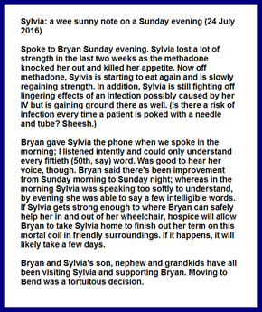 Sylvia: a wee sunny note on a Sunday evening (24 July 2016)