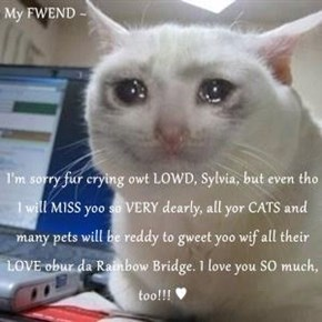 My FWEND ~  I'm sorry fur crying owt LOWD, Sylvia, but even tho I will MISS yoo so VERY dearly, all yor CATS and many pets will be reddy to gweet yoo wif all their LOVE obur da Rainbow Bridge. I love you SO much, too!!! ♥