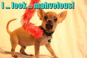 I … look … mahvelous!