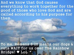 And we know that God causes everything to work together for the good of those who love God and are called according to his purpose for them.  To me, Romans 8:28 means our dogs & cats WAIT for us over The Rainbow Bridge! ♥ LoL